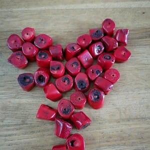rød koral