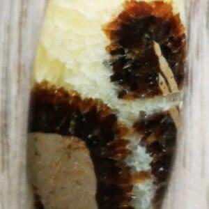 Septarie sten - æg 1