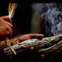 Salvie Hvid ritual