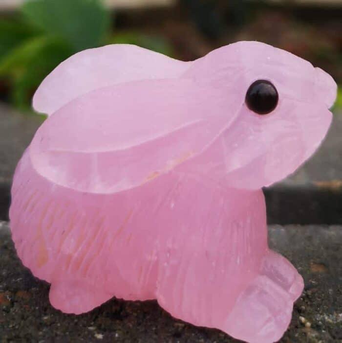 rosenkvarts hare-kanin