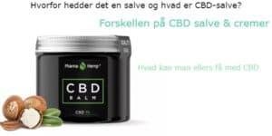 CBD salve og cremer hvad er forskellen og hvad kan man ellers få af hampolie cbd olie